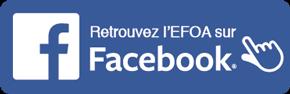 facebook-efoa