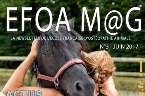 EFOA M@G N°3